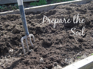 prepare-the-soil-jpg